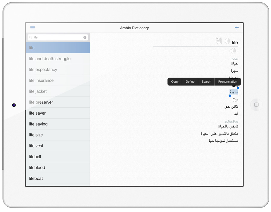 Arabic Dictionary in iPad